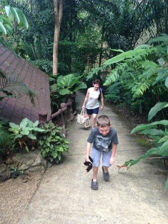 Khao Sok Las Orquideas Resort: That climb killed me every day....lol