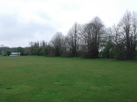 Athelington Hall Log Cabin Holidays: Large Playing Field Ideal For Your Pets