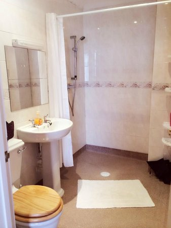 Earlham Guest House: EN-SUITE 01603 454 169 07502478868(07545826555)