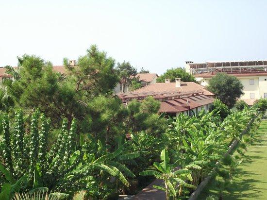 Club Hotel Turan Prince World: vu de la chambre