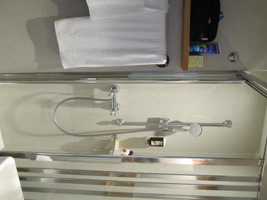 Hotel Alpenblick: The Bathroom