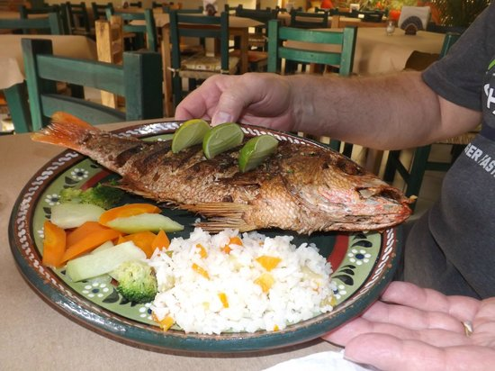 Melissa's: Fried Whole Red Snapper...FANTASTIC!