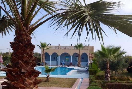 Riad Qodwa: Zicht op het zwembad vanaf de achterkant van de Riad.