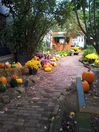 Brick Street Inn: Garden at Kogan's Antiques & Lighting Next Door to the Inn