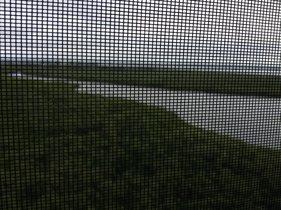 The Westin Cape Coral Resort At Marina Village : View from the room