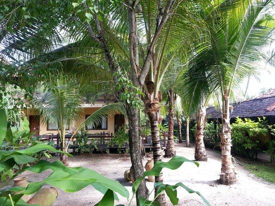 Pontal De Ocapora: hotel
