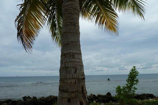 Hatchet Caye Resort: incredible views even when it is overcast