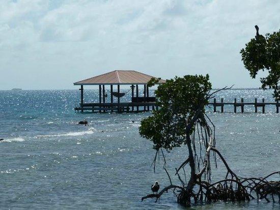 Hatchet Caye Resort: view of south dock