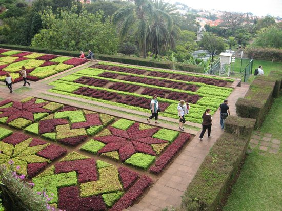 Madeira Botanical Garden : This looks good from above