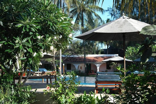 Flame Tree Cottages: Pool