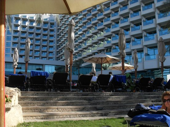 Hilton Dubai Jumeirah : View of the hotel from the pool area