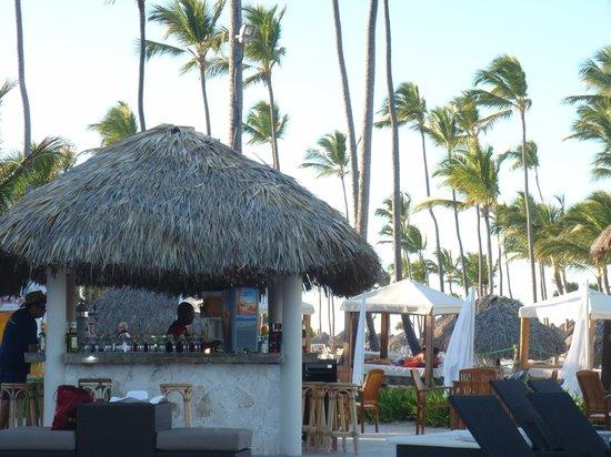 Majestic Elegance Punta Cana: pool bar