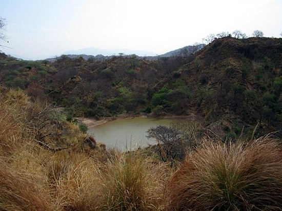 Nepli Reserve Forest