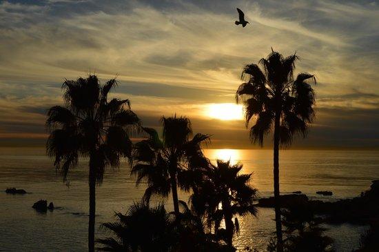 The Inn At Laguna Beach : Sunset at Laguna Beach