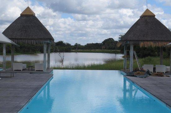 Kapama River Lodge : Spa pool with giraff in the horizon