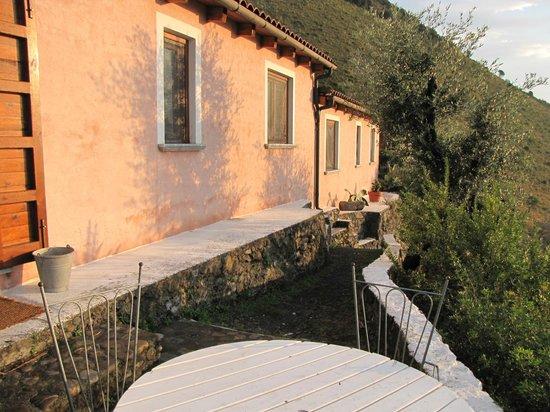 Azienda Agricola Nappi : The grounds