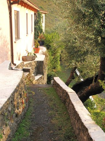 Azienda Agricola Nappi : Steps to our room