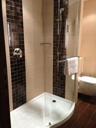 Hilton Garden Inn Davos: Dusche