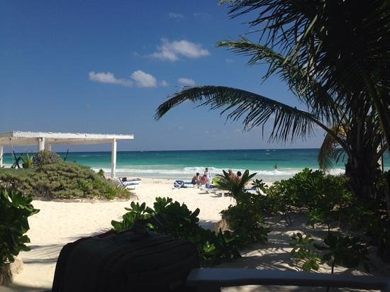 Coco Tulum : view from the porch on cabana #1