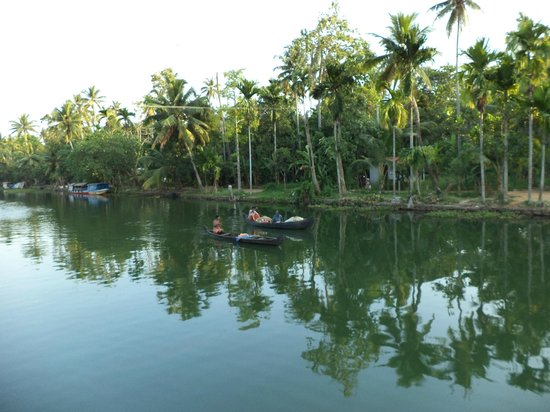 Manor Backwater Resort: The boating in the backwaters