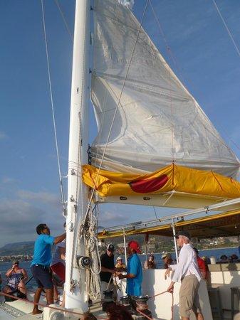 Picante: catamaran