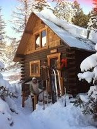 Pioneer Guest Cabins : X country ski fron the cabin