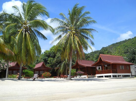 Phangan Rainbow Bungalows : Bungalows direkt am Meer