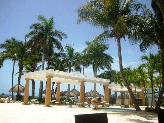 Gostoso picture of divi aruba phoenix beach resort palm eagle beach tripadvisor - Divi aruba beach resort ...