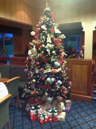 Loch Achray Hotel: the Christmas Tree