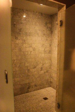 Waldorf Astoria Chicago: Large shower