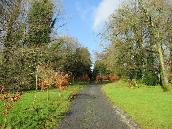 Farnham Estate Spa and Golf Resort: Afternoon stroll on the grounds