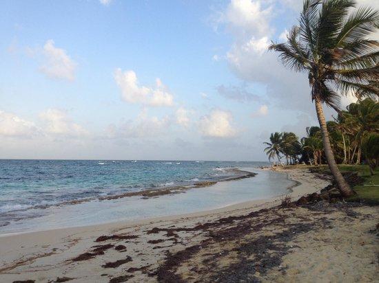 Hospedaje Los Escapados: Beach