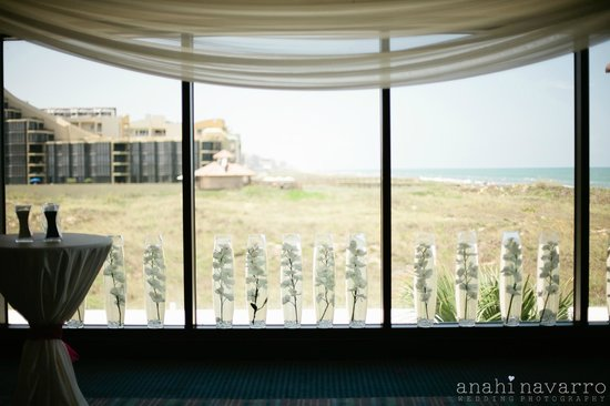 South Padre Island Weddings | Blue Marlin Room Beach View Wedding Reception Picture Of Pearl