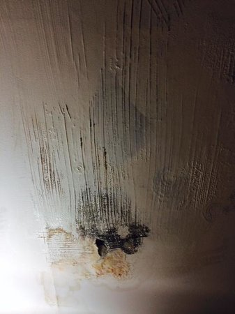Holiday Inn Hotel Summit County: ceiling in bathroom. GROSS
