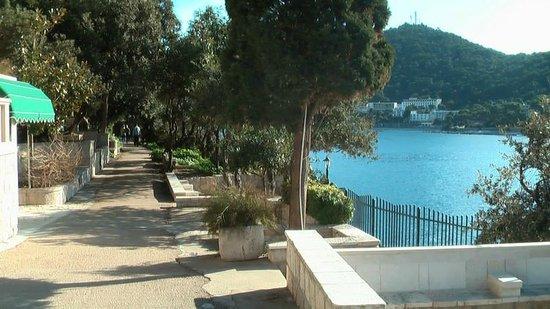 Villa Micika : Promenade