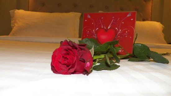 Louis Appartements : Happy Valentines surprise!!!