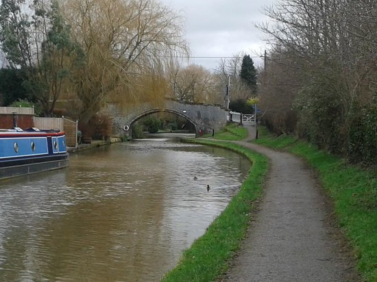 Cheshire Cat Hotel: Canal tow path