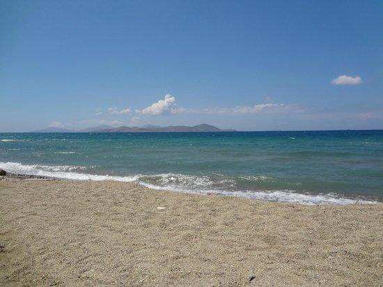 Astir Odysseus Resort & Spa: la plage