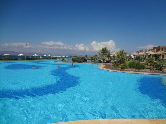 Astir Odysseus Resort & Spa: la grande piscine
