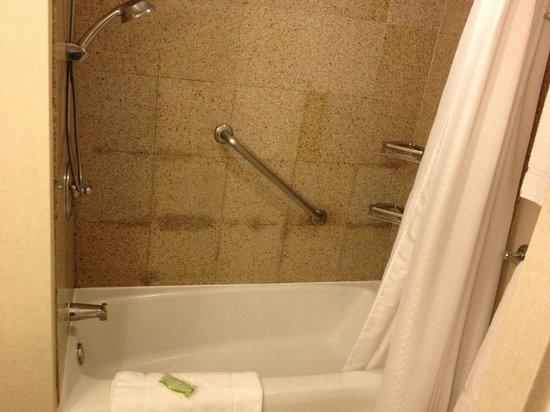 Moana Surfrider, A Westin Resort & Spa: shower, good pressure