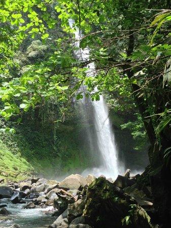 La Fortuna Waterfall: Waterfall