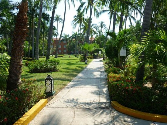 Club Med Ixtapa Pacific: Nice landscaping.