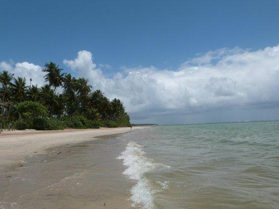 Pousada Tatiba: Playa con marea intermedia
