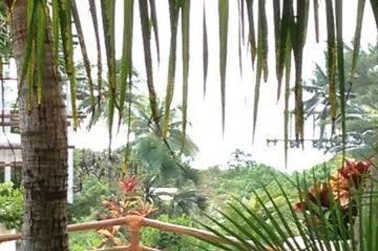 Porto Playa Condo Hotel & Beachclub: View from my deck at Porto Playa