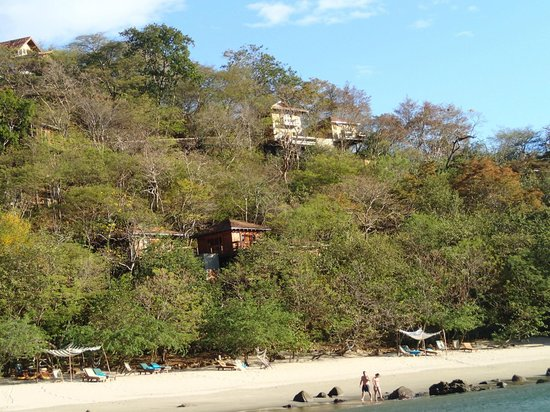 Aqua Wellness Resort: View of treehouses from kayak