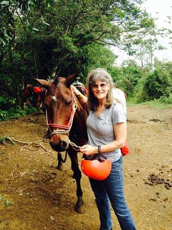 Lobos Tour: This little mare has spunk