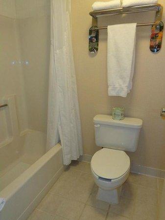 Holiday Inn Express Keene : bathroom