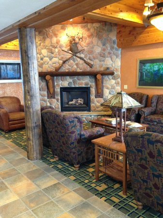 Best Western Plus Holland Inn & Suites: Lobby