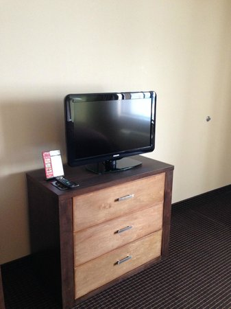 BEST WESTERN PLUS Holland Inn & Suites: TV