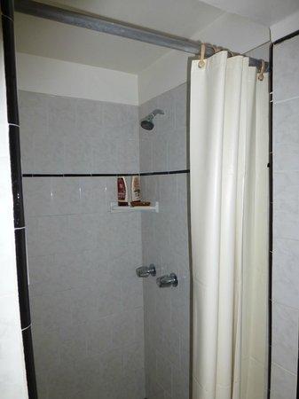 Coral Sands Motel: Chuveiro